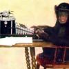 MonkeyTyping